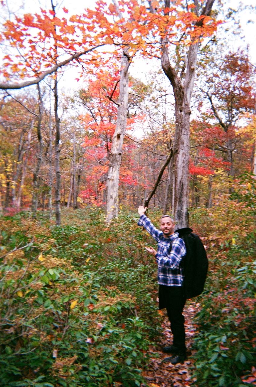 Fall foliage begins!