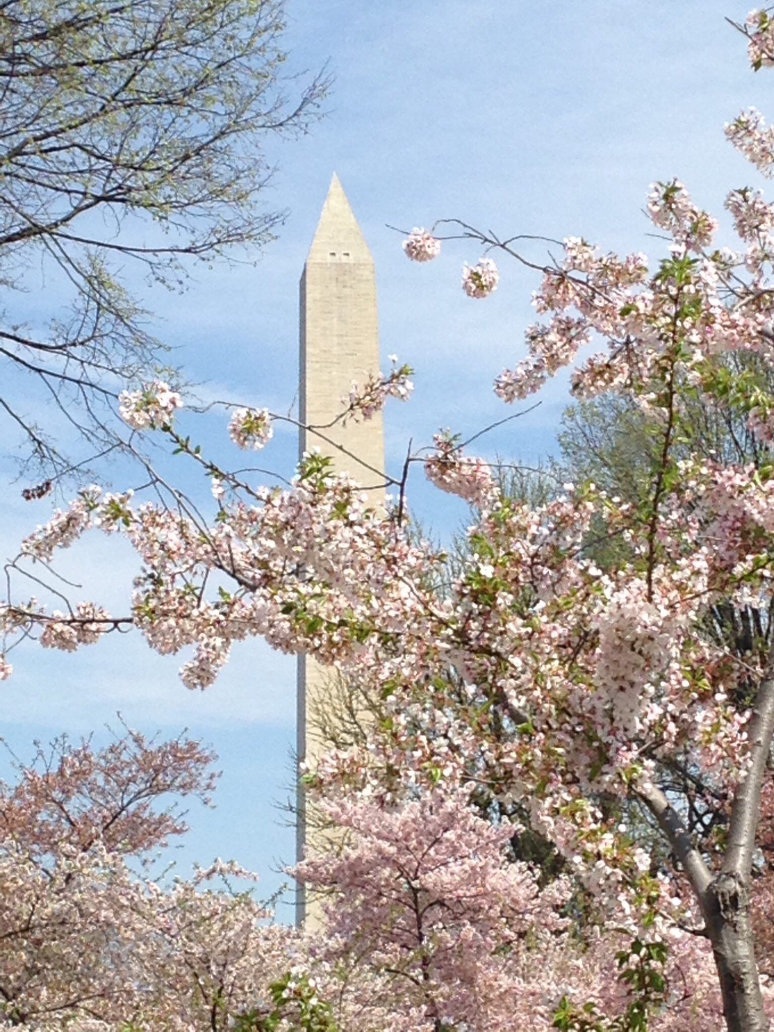 Blossom monument