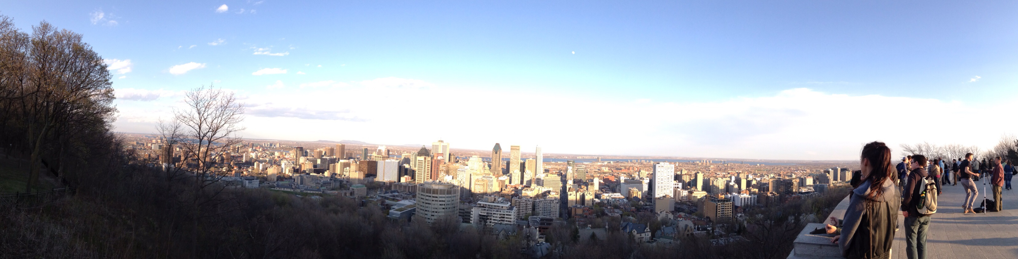 Downtown Montreal from top of Mount Royal